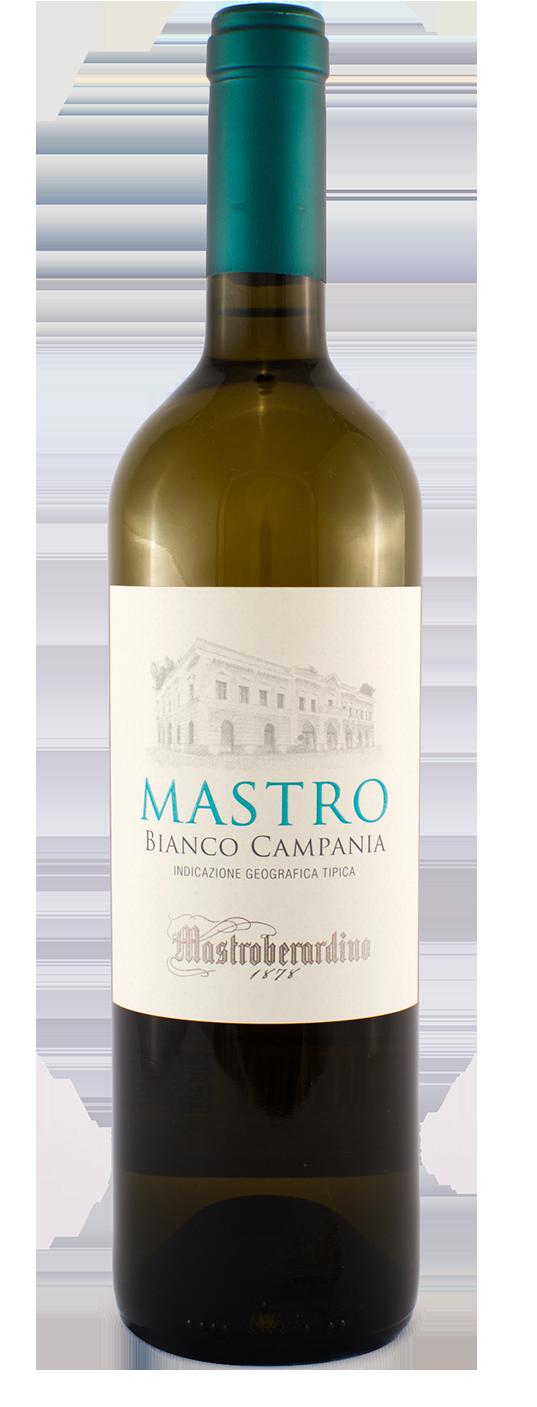 Mastro Bianco Campania IGT rid